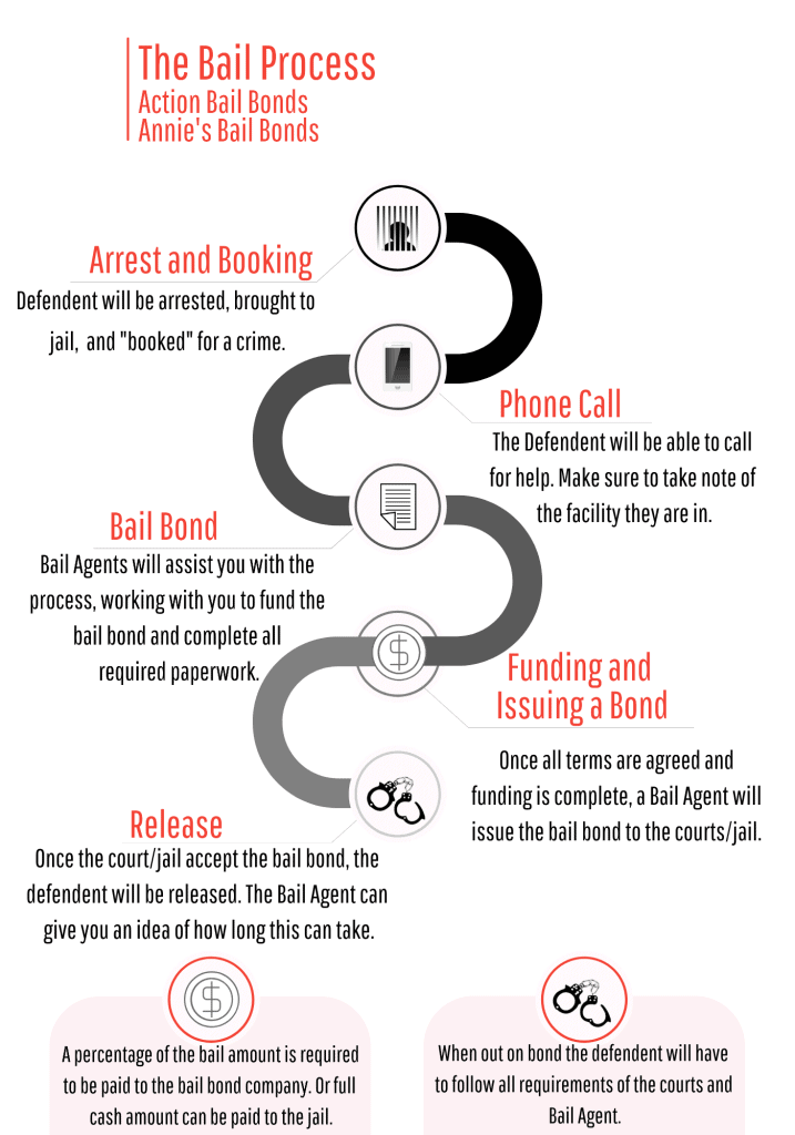 Bail Bond Infographic